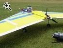 Nurflügler: Queen Bee motorisiert - Vorschaubild 2